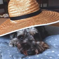 日焼けしていい感じになってきた麦わら帽子とパチリ。