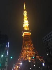 今日は、アナイス-動物と共に避難する-の懇親会に参加しました(*^^*) 外国のスライドレポートや専門家や大先輩のお話を聞いたりとたくさんの学びを頂きました! 今日は建物から出てすぐ見える東京タワーをパチリ。 進めー!です。