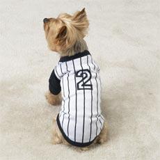 Boy dog baseball tee