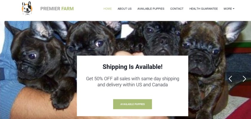 Premierkennel.com - French Bulldog Puppy Scam Review