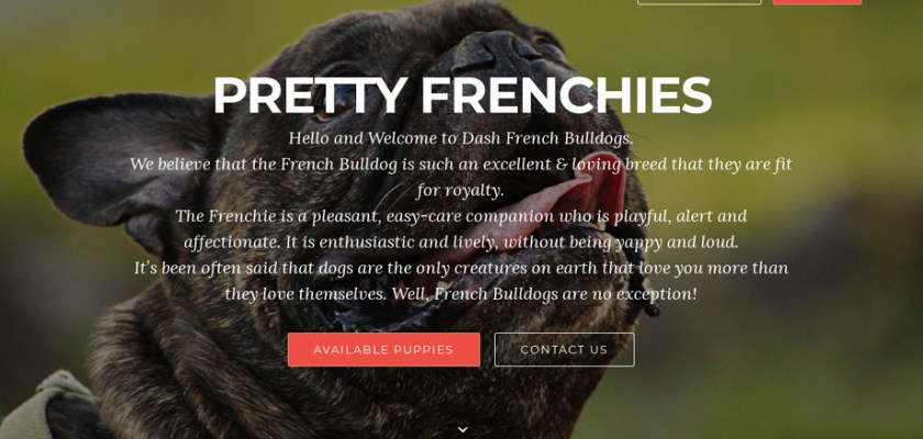 Prettyfrenchies.com - French Bulldog Puppy Scam Review