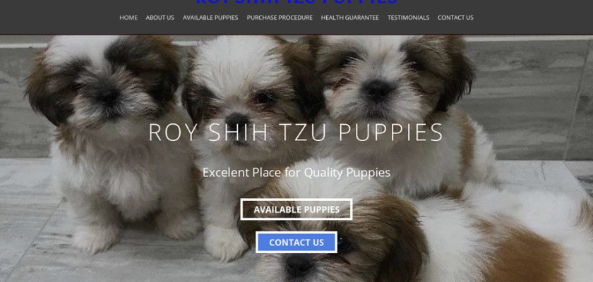Royshihtzupuppies.com - Shihtzu Puppy Scam Review
