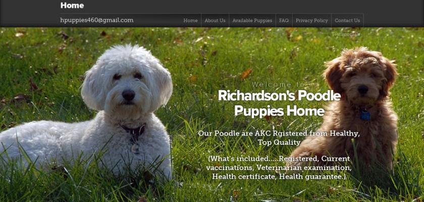 Richardsonpoodle.com - Poodle Puppy Scam Review