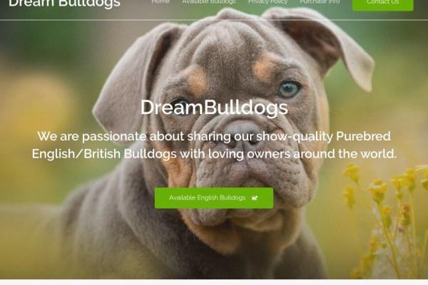 Dreambulldogs.com - English Bulldog Puppy Scam Review