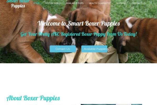 Smartboxerpuppies.com - Boxer Puppy Scam Review