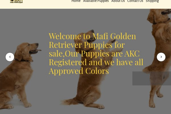 Mafigoldenretrievers.com - Golden Retriever Puppy Scam Review