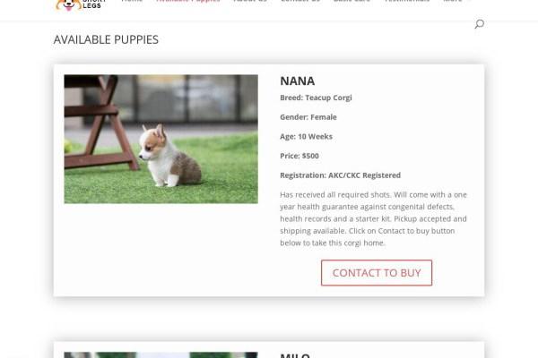 Prettyshortlegs.com - Corgi Puppy Scam Review