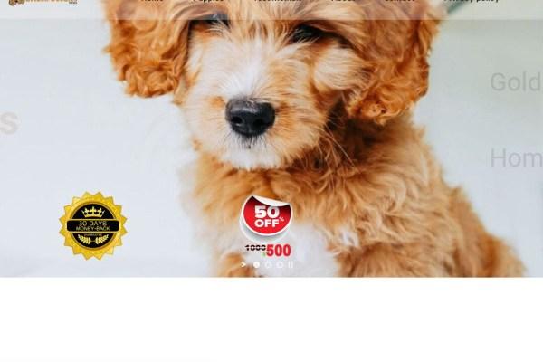 Goldendoodleshome.com - Golden Doodle Puppy Scam Review