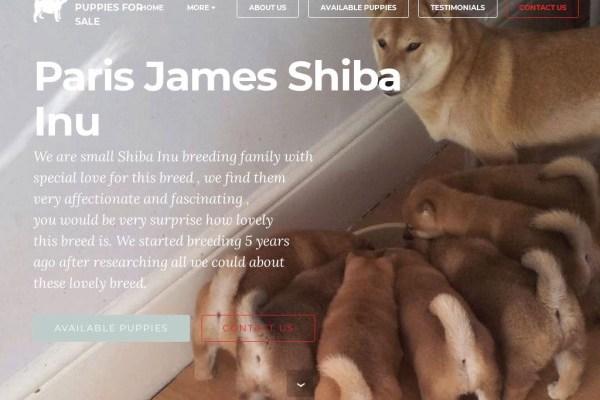 Parisjamespets.com - Shibhainu Puppy Scam Review