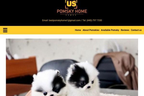Uspomskyhome.com - Pomeranian Puppy Scam Review