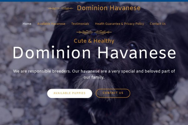 Dominionhavanesepuppies.com - Australian Shepherd Puppy Scam Review