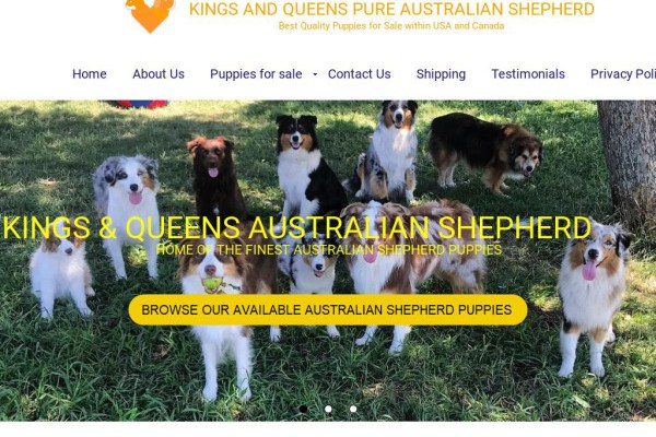 Kandqaustralianshepherd.com - Germanshepherd Puppy Scam Review