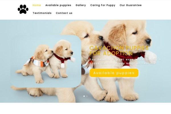 Poetycavachonpups.com - Cavachon Puppy Scam Review
