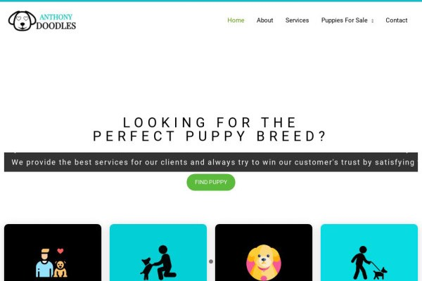 Anthonydoodles.com - Labradoodle Puppy Scam Review