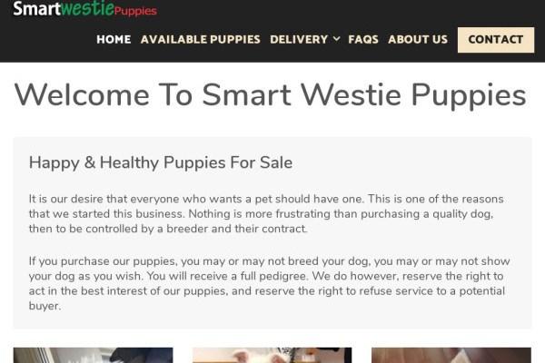 Smartwestiepuppies.com - Yorkshire Terrier Puppy Scam Review