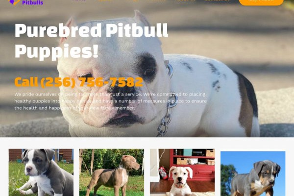 Abkcpitbulls.com - Pit Bull Puppy Scam Review
