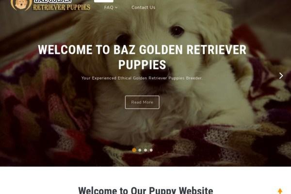 Bazgoldenretrieverpups.com - Golden Retriever Puppy Scam Review