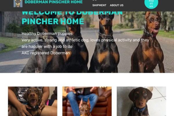 Dobermanpinscherhome.com - Doberman Pinscher Puppy Scam Review