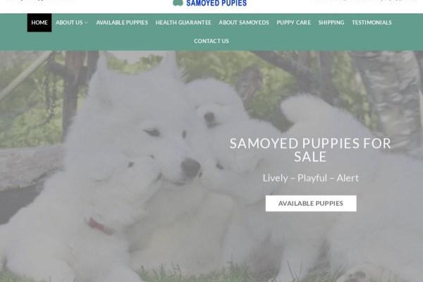 Homeofsamoyedpuppies.us - Samoyed Puppy Scam Review