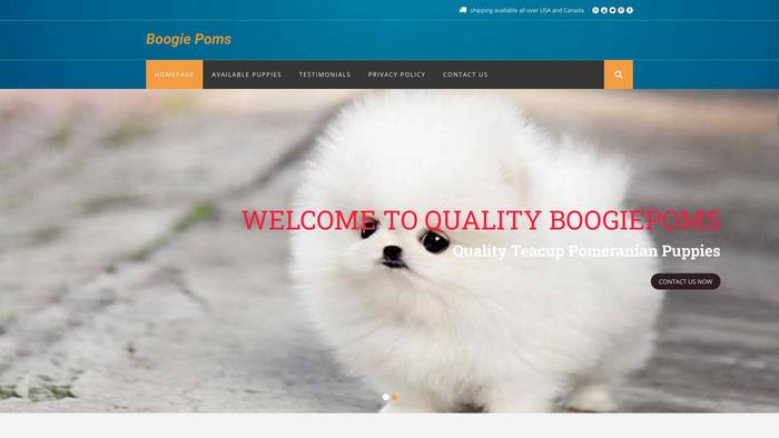 Boogiepoms.com - Pomeranian Puppy Scam Review