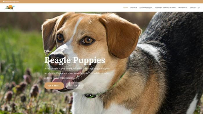 Pridebeagle.com - Beagle Puppy Scam Review