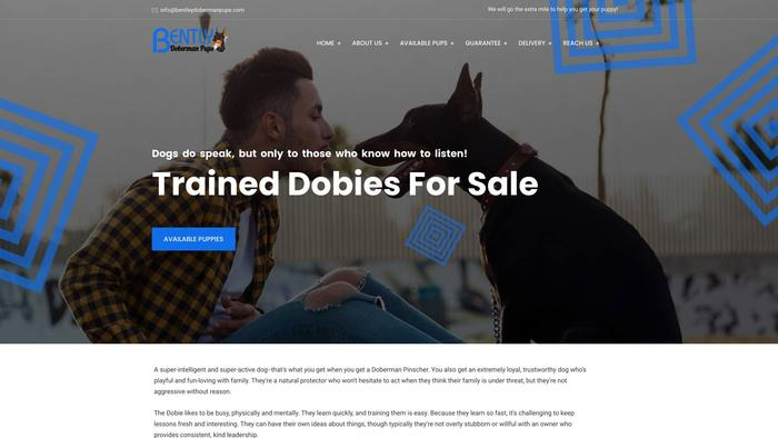 Bentleydobermanpups.com - Doberman Pinscher Puppy Scam Review