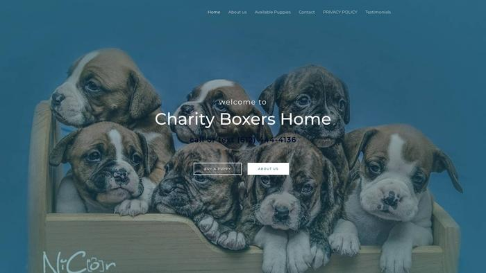 Charityboxershome.com - Boxer Puppy Scam Review