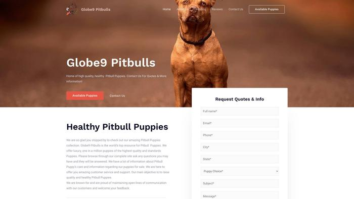 Globe9pitbulls.com - Pit Bull Puppy Scam Review