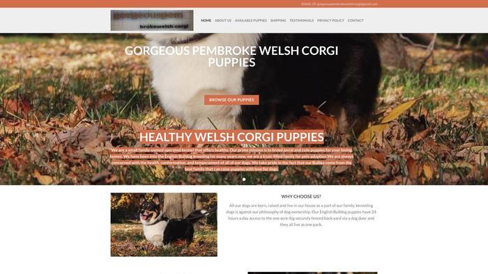 Gorgeouspembrokewelshcorgi.com - Corgi Puppy Scam Review