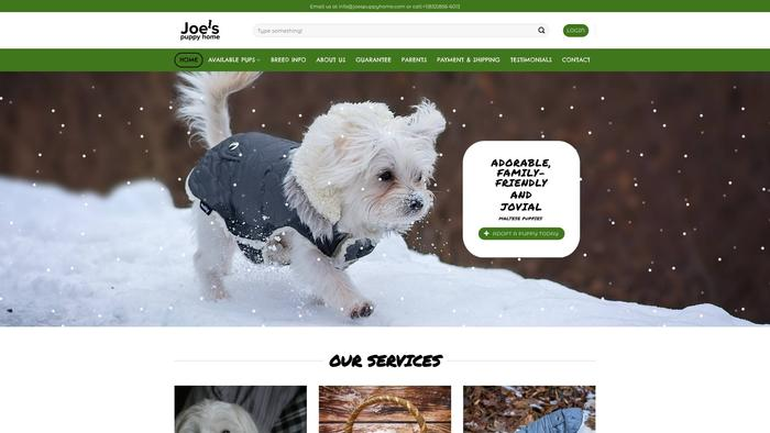 Joespuppyhome.com - Maltese Puppy Scam Review