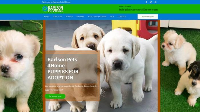 Karlsonpets4home.com - Labrador Puppy Scam Review