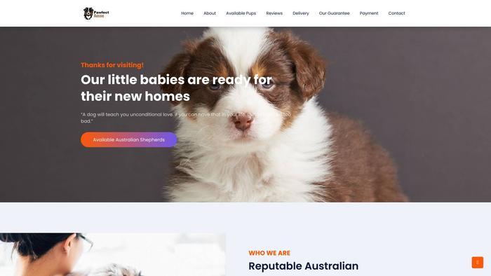Ouraussiepuppies.com - Australian Shepherd Puppy Scam Review