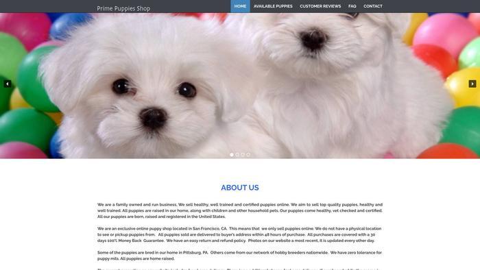 Puppy-store.com - Pomeranian Puppy Scam Review