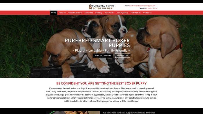 Purebredsmartboxerpuppies.com - Boxer Puppy Scam Review