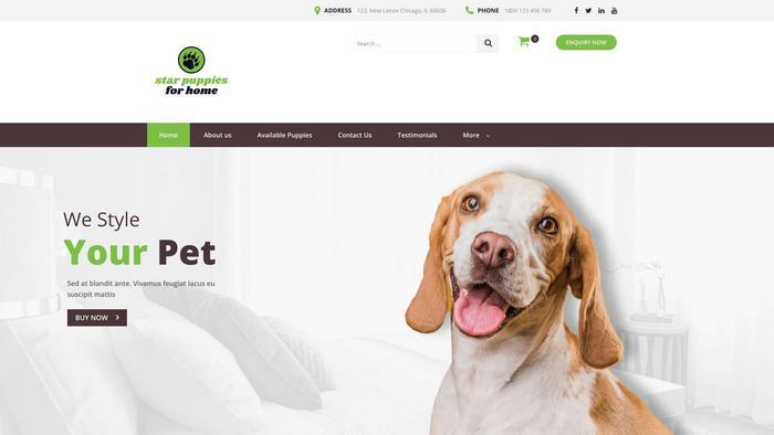 Starpuppiesforhome.com - Beagle Puppy Scam Review