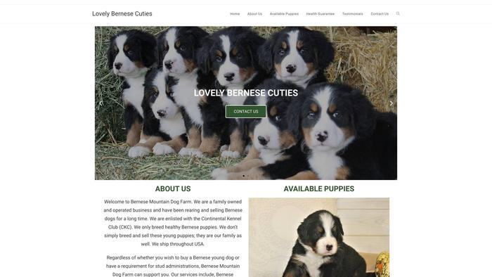 Lovelybernesecuties.com - Bernese Mountain Dog Puppy Scam Review