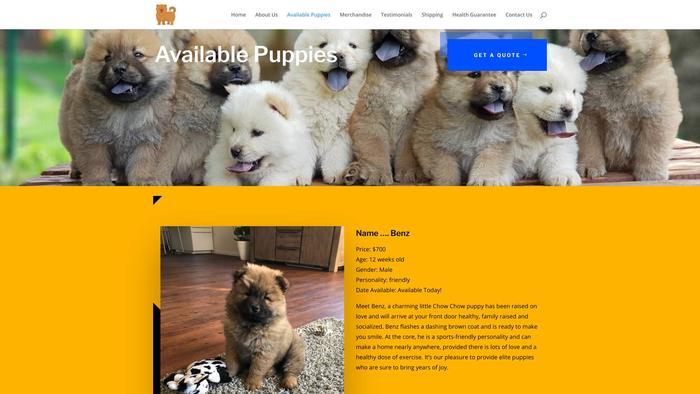 Coralchowchowpuppies.com - Chowchow Puppy Scam Review