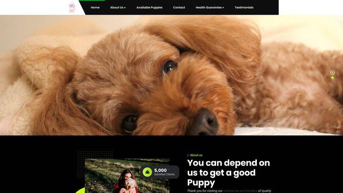 Heartmeltsteacupspoodle.com - Poodle Puppy Scam Review