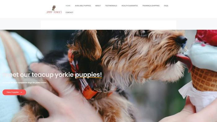 Jimmyyorkies.com - Yorkshire Terrier Puppy Scam Review