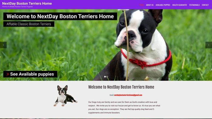 Nextdaybostonterriershome.com - Boston Terrier Puppy Scam Review