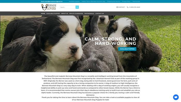 Berneselovers.com - Bernese Mountain Dog Puppy Scam Review