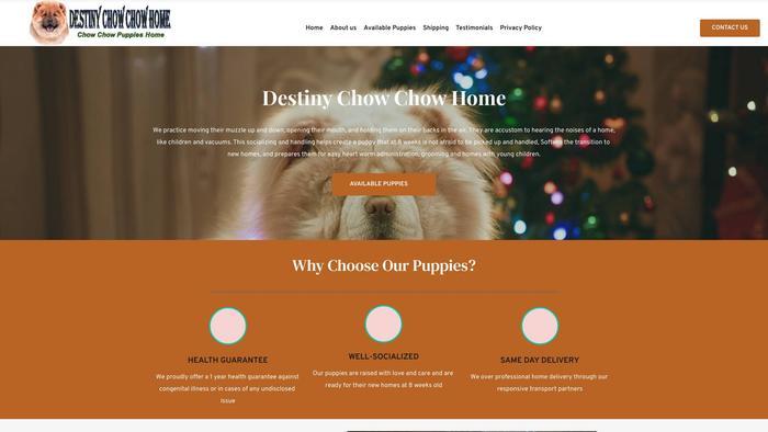 Destinuchowchowhome.com - Chowchow Puppy Scam Review