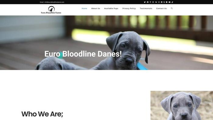 Eurobloodlinedanes.com - Great Dane Puppy Scam Review