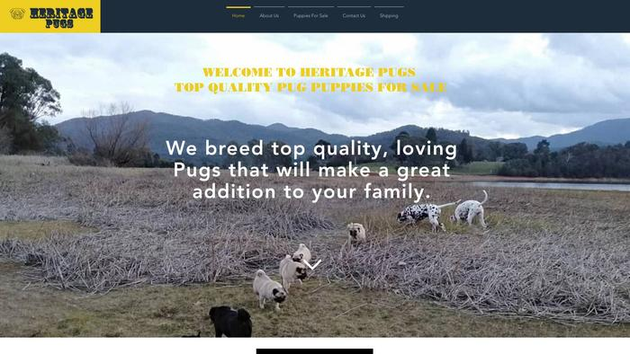 Heritagepugs.com - Pug Puppy Scam Review