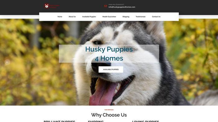 Huskypuppies4homes.com - Husky Puppy Scam Review