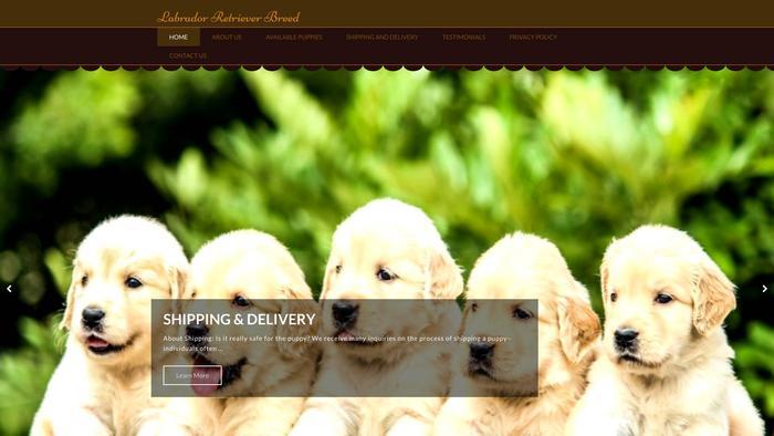 Labradorretrieverbreed.com - Golden Retriever Puppy Scam Review