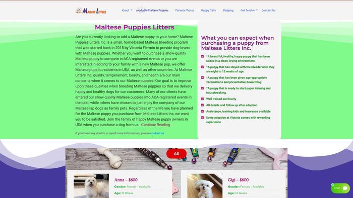 Malteselitters.com - Maltese Puppy Scam Review