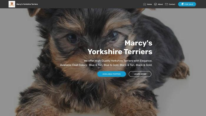 Marcysyorkshires.com - Yorkshire Terrier Puppy Scam Review