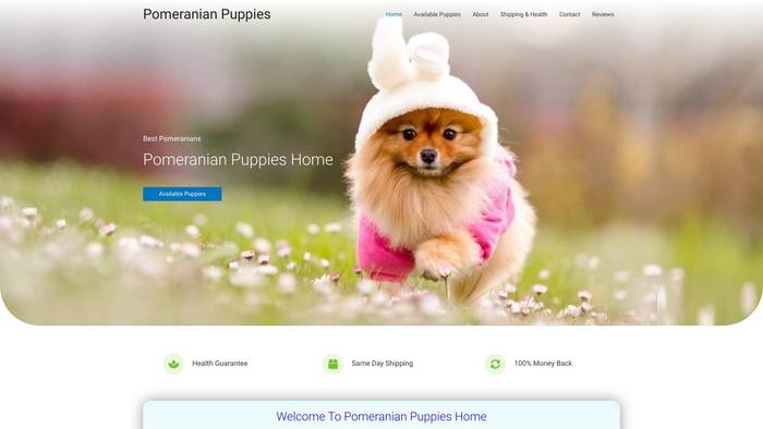 Pomeranianpuppies.xyz - Pomeranian Puppy Scam Review