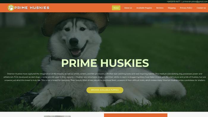 Primerahuskies.com - Husky Puppy Scam Review